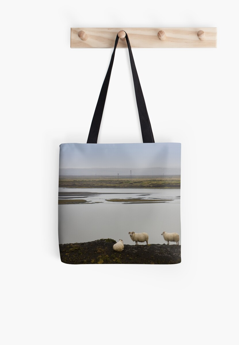 Sheep on high by Phil Bain