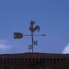 Weather Vane - San Sebastian Del Oeste by Allen Lucas