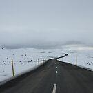 Road to Seyðisfjörður by Phil Bain
