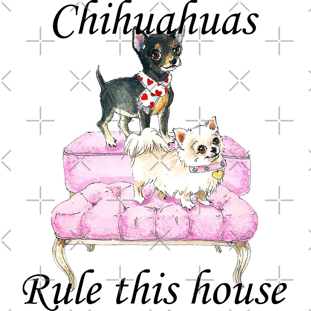 Pink Sofa Chihuahuas Rule by SusieQQQ