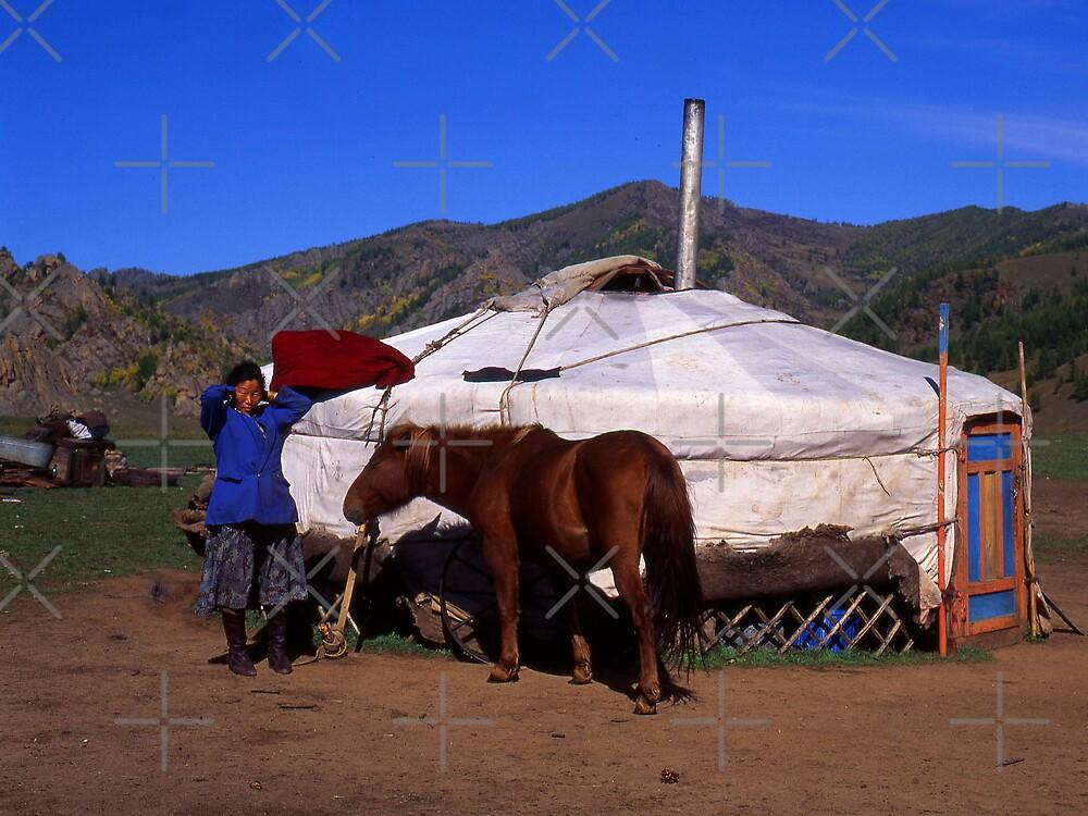 Mongolian Yurt by Terry Mooney