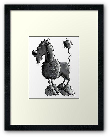 Black Poodle by modartis