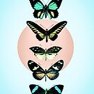 Butterfly parade by Gale Switzer