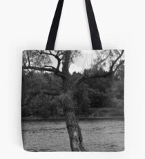 Photo of tree near water Tote Bag
