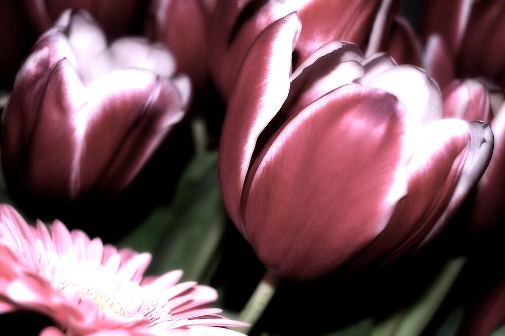 flowers by verte
