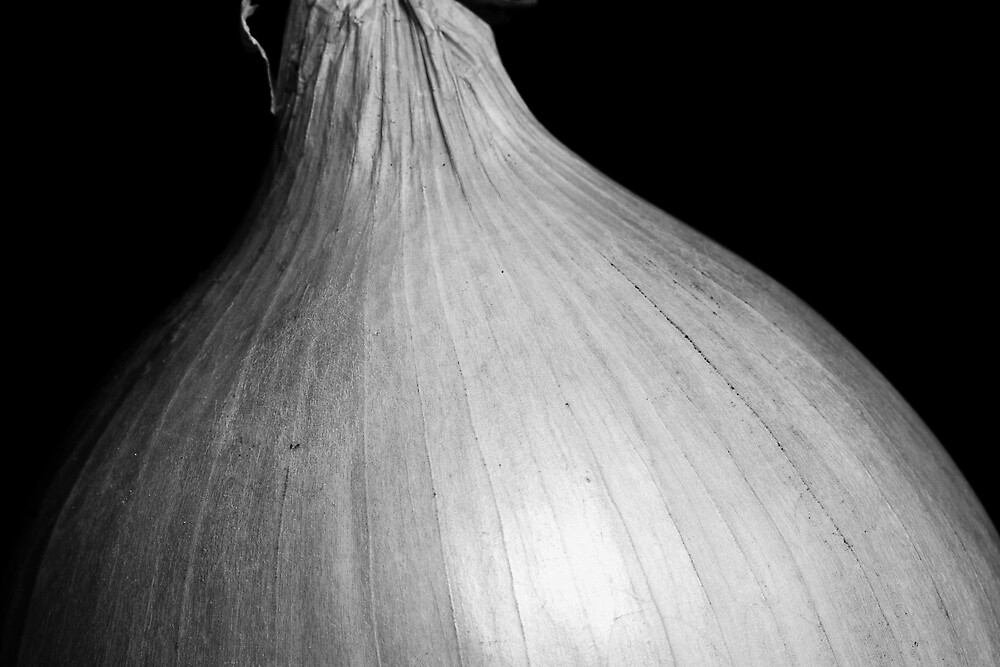 Onion by Lars Clausen