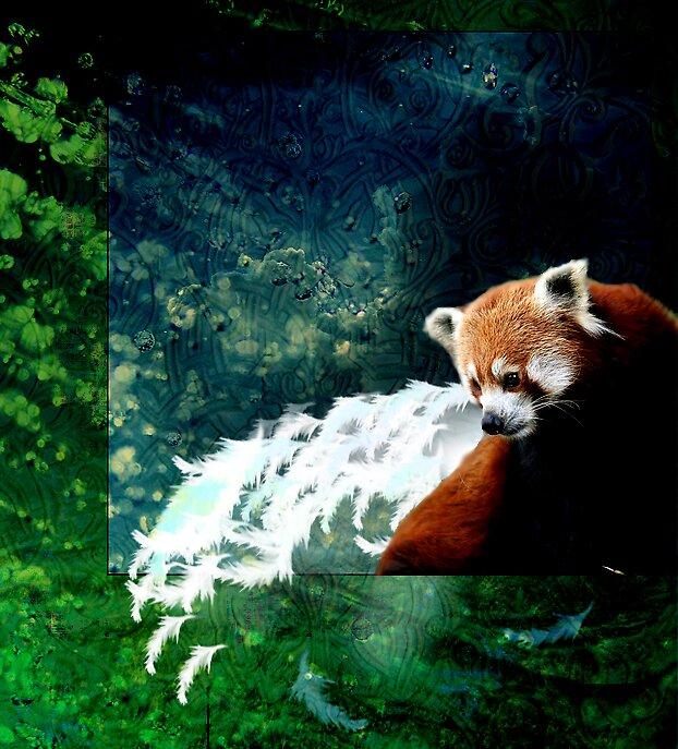 Red Panda Manip by OnyxWolf