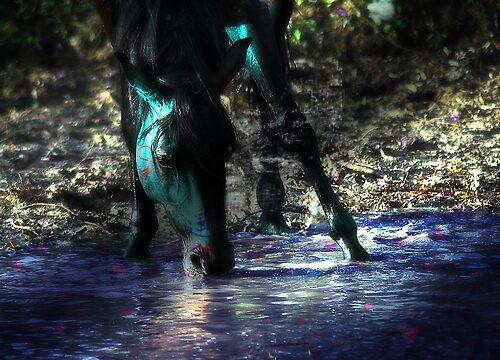 Horse manip #2 by OnyxWolf