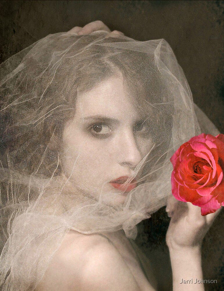 Vintage and Veiled by Jerri Johnson