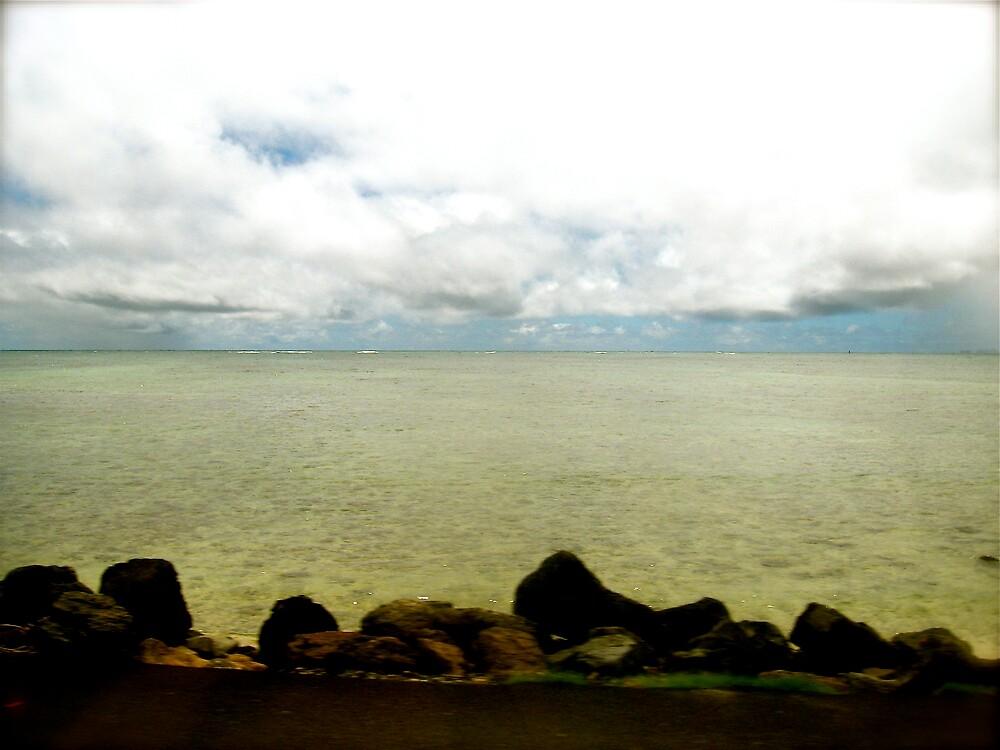 horizon by robynb52