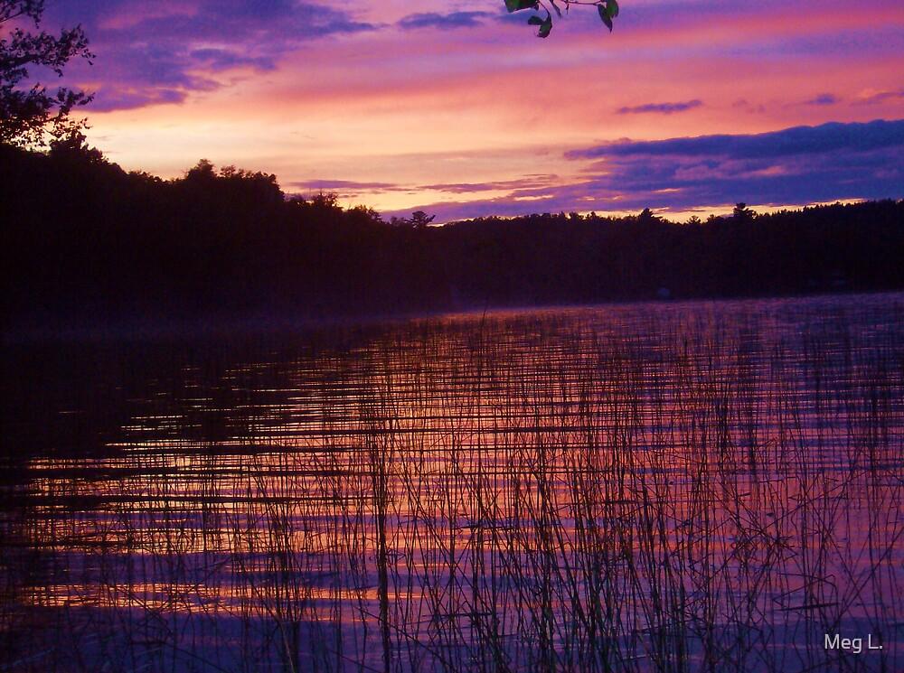 dawn by Meg L.