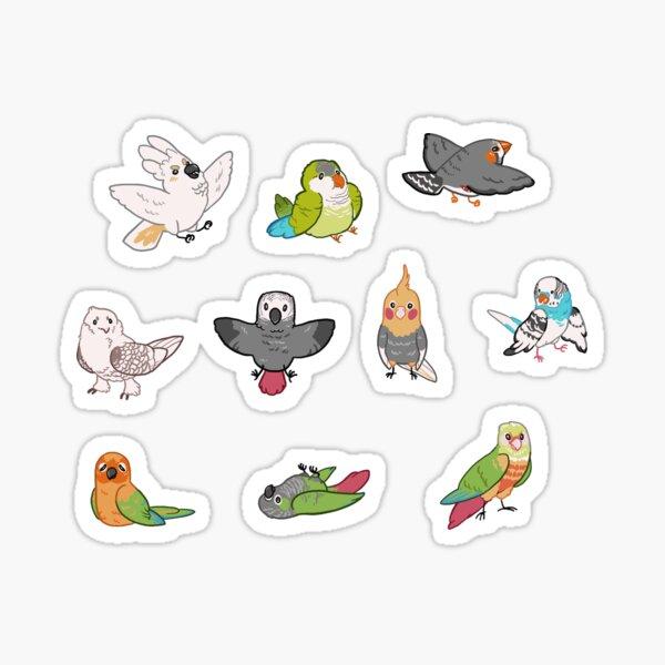 Pet Birbs Sticker