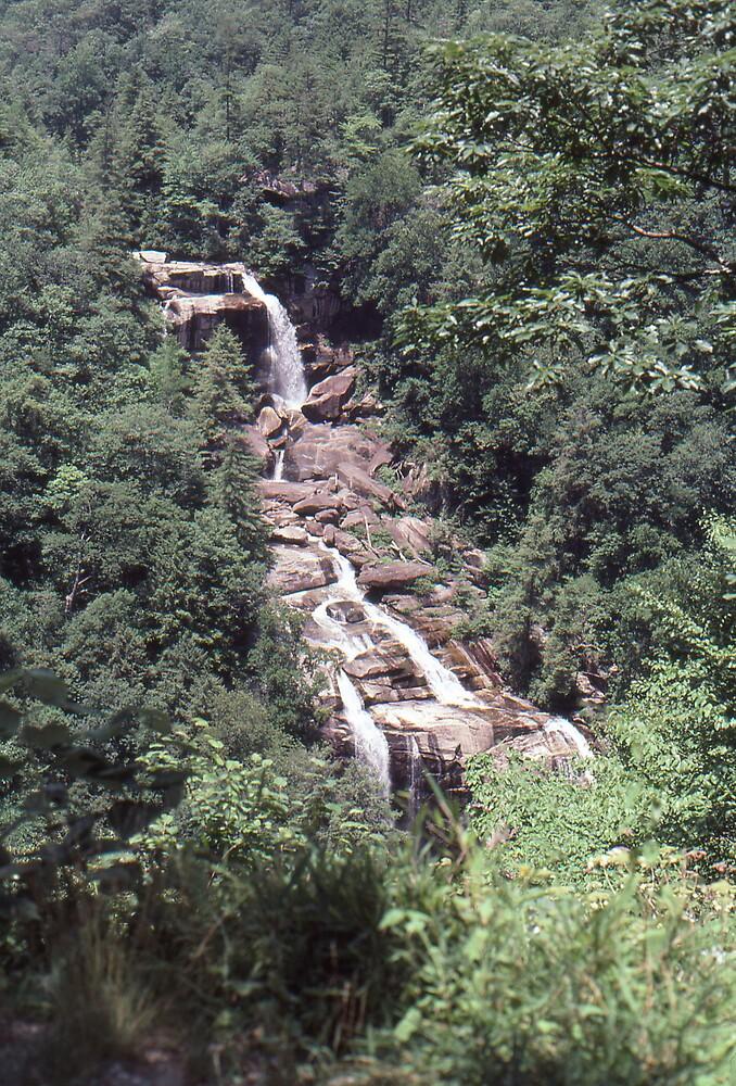 North Carolina Waterfall by GMooneyhan