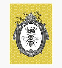 Queen Bee Photographic Print