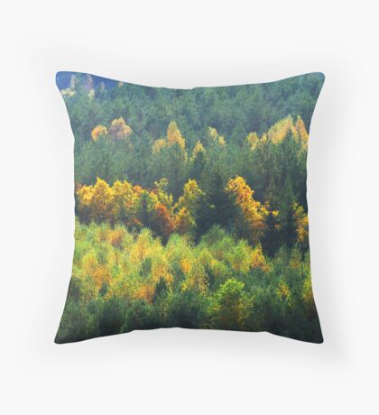 View of the forest in autumn colors Throw Pillow