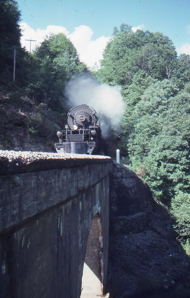 1218 at Mill Creek by GMooneyhan