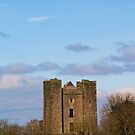 Dunsoghly Castle by Martina Fagan