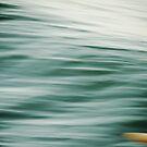 surf solitude by wellman