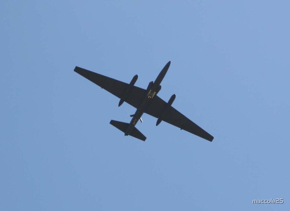 U-2 by maccole25