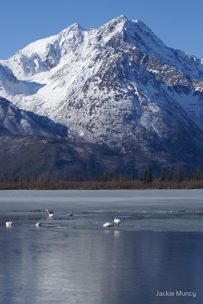 Swans' Lake by Jackie Muncy