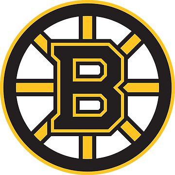 NHL Boston Bruins by overflag