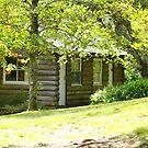 Cabin in the Gardens by TrinityCentaur