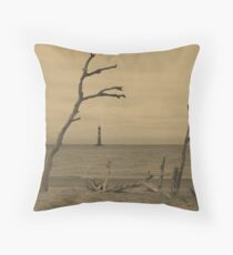 Ravaged By Time Throw Pillow