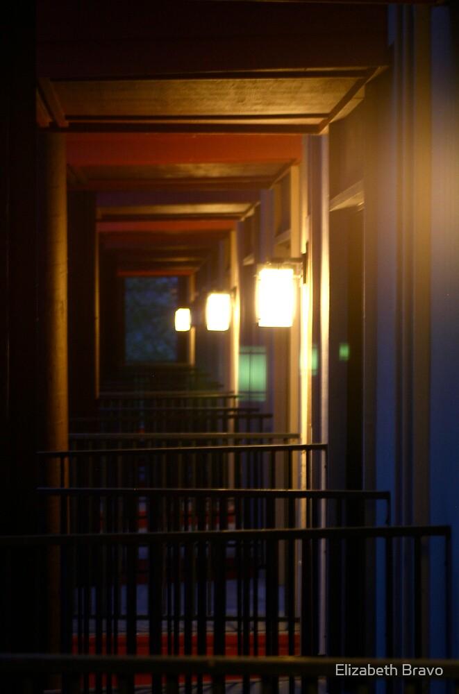 Balconies by Elizabeth Bravo