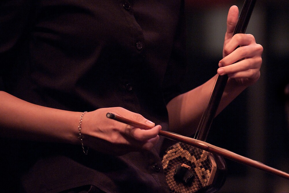 Thumbs up for the erhu by richardseah