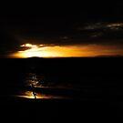 sunset run by wellman