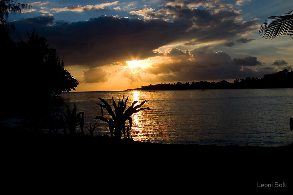 Vanuatu Dreaming by Leoni Bolt