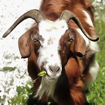 Whimsical Portrait Horned Goat  Grazing by taiche