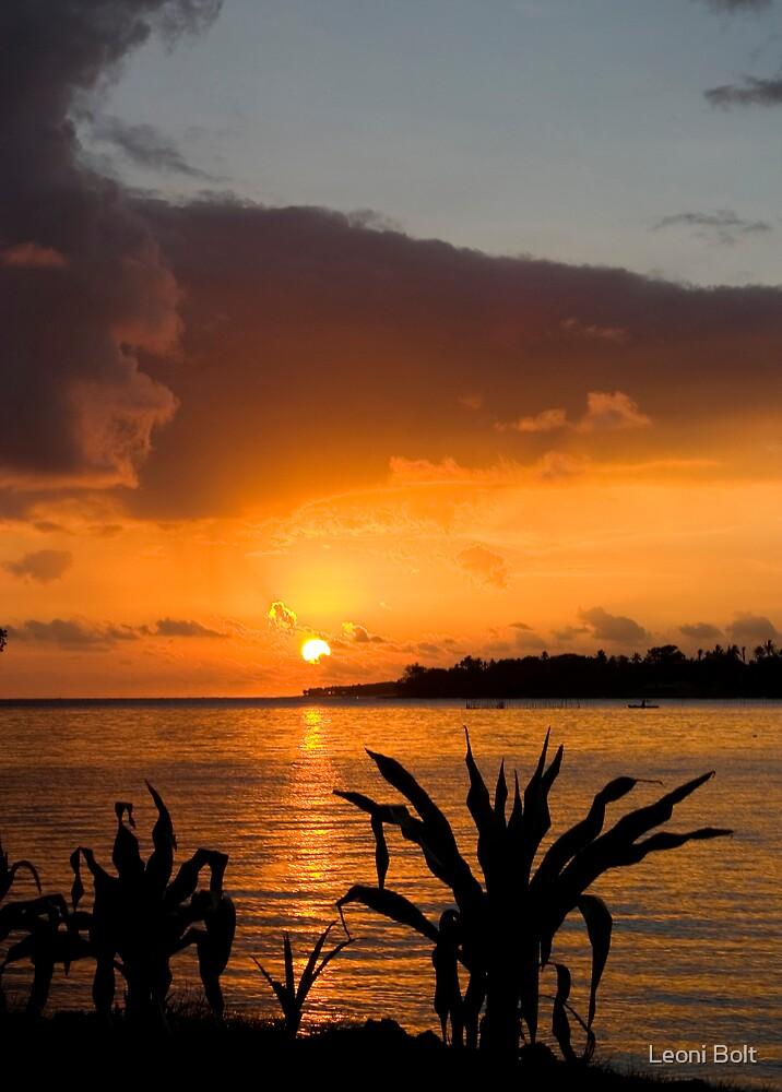 Vanuatu Dreaming II by Leoni Bolt