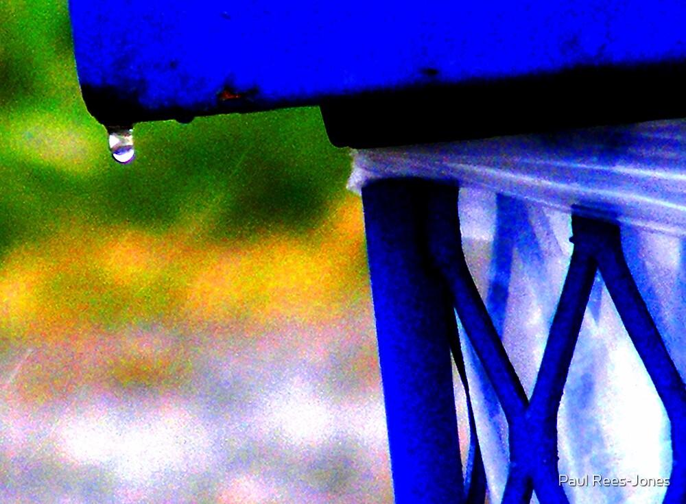 A Little Rain. by Paul Rees-Jones
