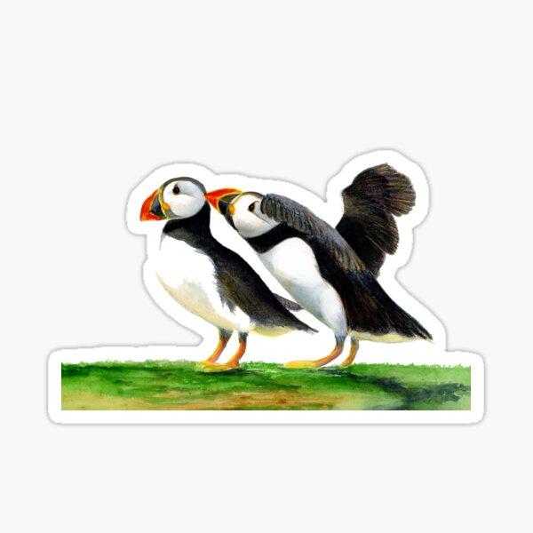 Atlantic Puffin Birds Watercolor Painting Wildlife Artwork Sticker