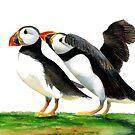 Atlantic Puffin Birds Watercolor Painting Wildlife Artwork by Alison Langridge