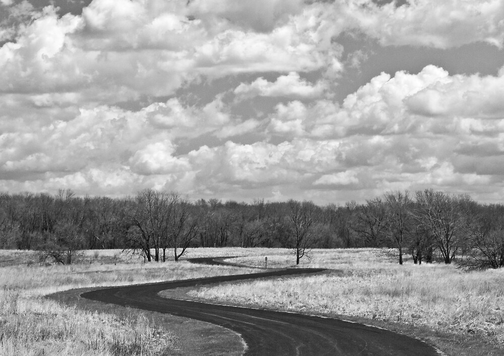 Winding Road by JThill