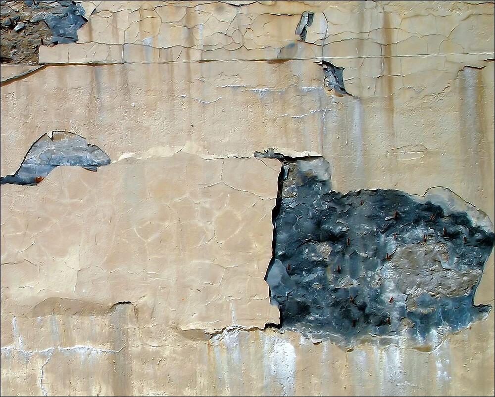 Cracks by Donnie Shackleford