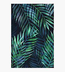 Dark green palms leaves pattern Photographic Print