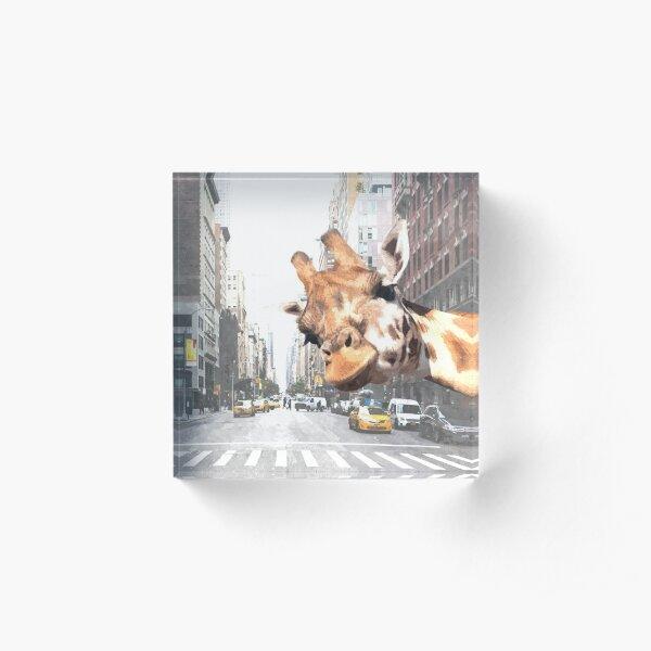 Selfie Giraffe in New York Acrylic Block