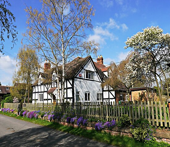 English Cottage in Spring by ScenicViewPics