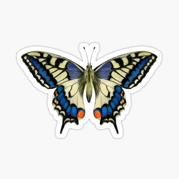 Swallowtail Butterfly Watercolor Painting Wildlife Artwork Sticker
