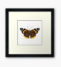Red Admiral Butterfly Watercolor Painting Wildlife Artwork Framed Print