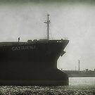 The Catriena by tonilouise