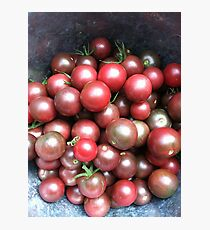 Black Cherry Tomatoes Photographic Print