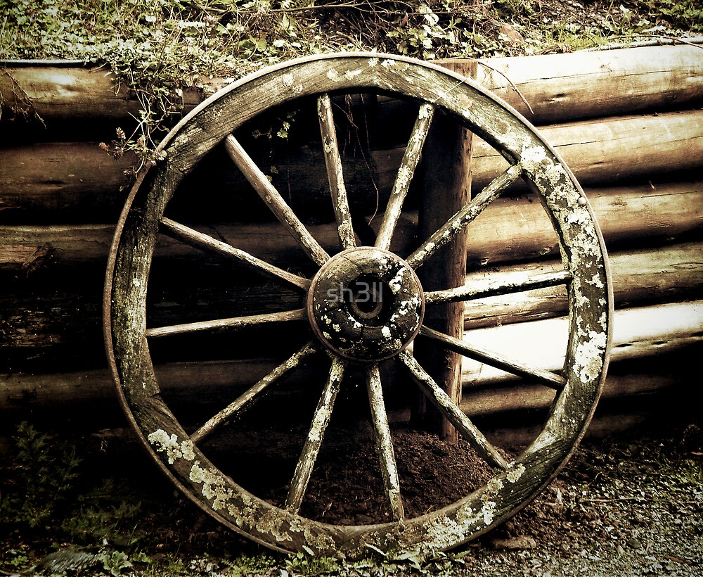 Rustic Wheel by sh3ll