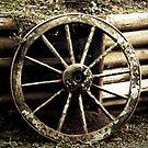 Rustic Wheel by sh3ll