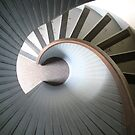 Downward Spiral by Stacy Griebel