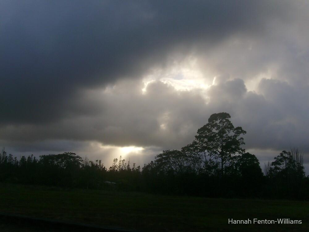 sun rays by Hannah Fenton williams