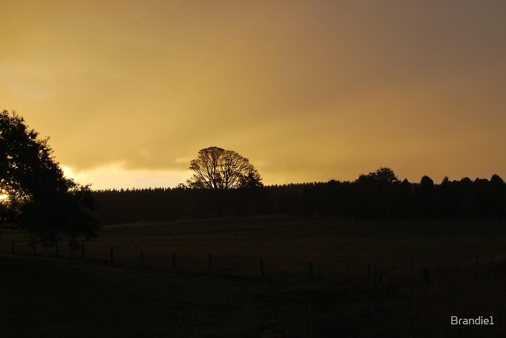 Sunset over Bathurst by Brandie1